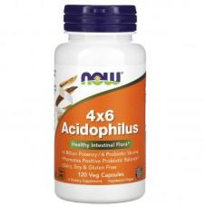 Acidophilus 4x6 (ацидофильные бактерии), 120 растительных капсул (Now Foods)